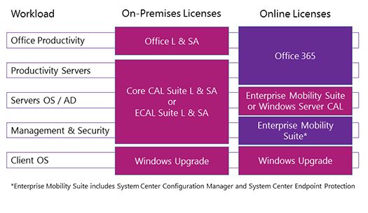 Client Access Licenses and Management Licenses